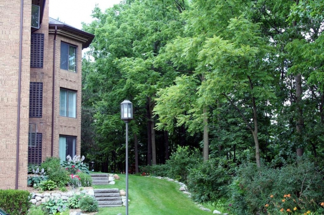 Nature Cove Condos, Ann Arbor Wooded View