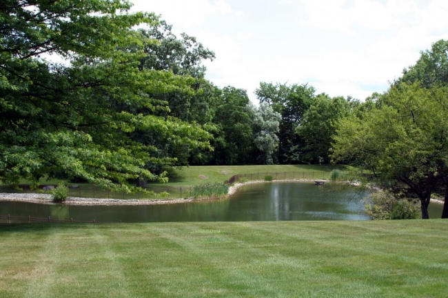 Nature Cove Condos, Ann Arbor Pond View