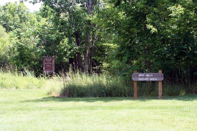 Newport West Condos, Ann Arbor Bird Hill Nature Area
