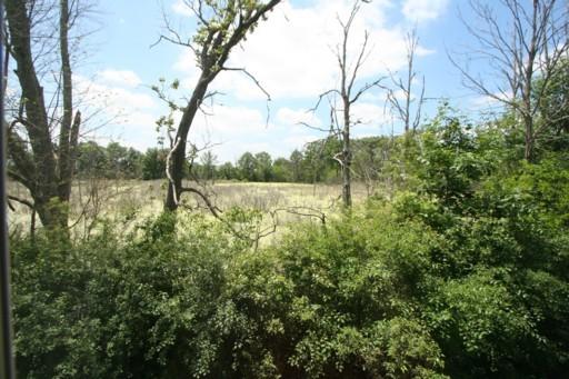 Burwyck Park Condos, Saline View of Nature Area
