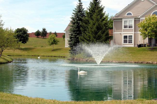Weatherstone Pond & Fountain