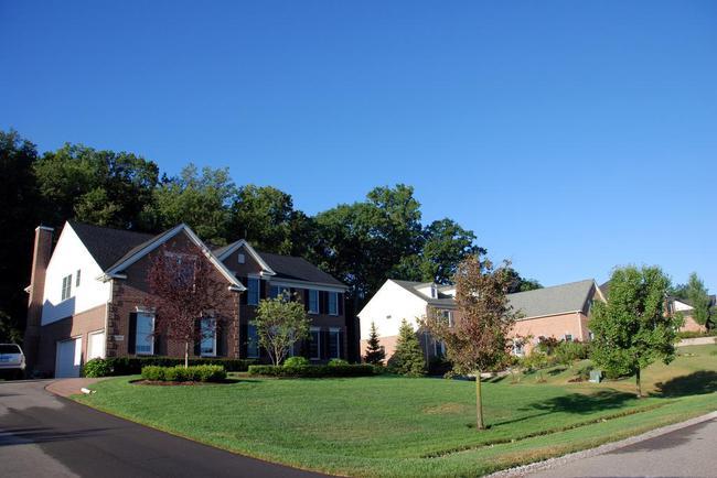 Walnut Ridge Subdivision, Ann Arbor Summer Street View
