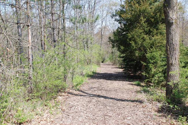 Walnut Ridge Subdivision, Ann Arbor Nature Trail