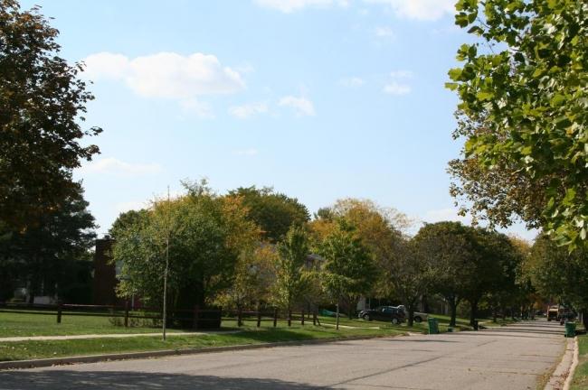 Old Creek Farms, Saline MI Street View