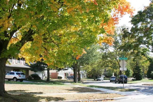Georgetown Neighborhood, Ann Arbor View