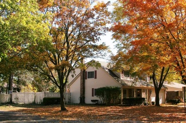 Georgetown, Ann Arbor Home