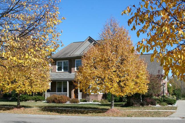 Cobblestone Ridge, Canton Home