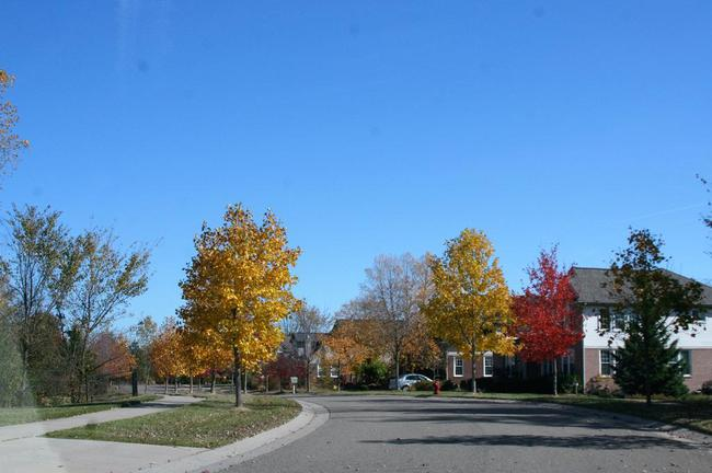 Cobblestone Ridge, Canton View of Neighborhood
