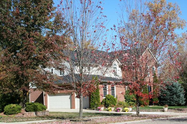 Cobblestone Ridge, Canton Subdivision House