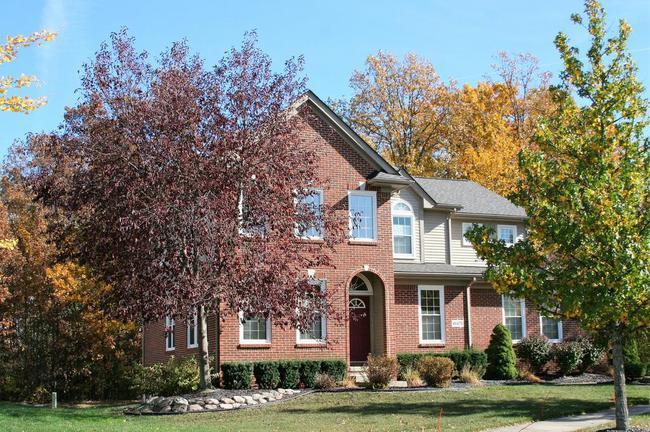 Cobblestone Ridge, Canton Subdivision Brick Home