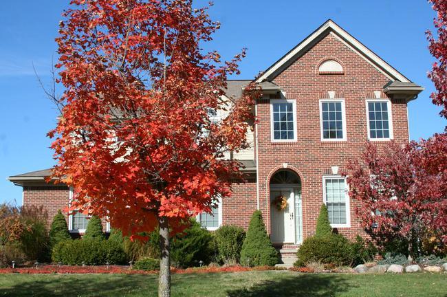 Cobblestone Ridge, Canton Neighborhood Brick Home